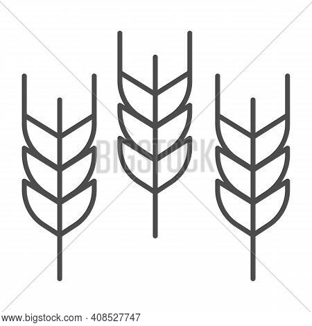 Spikelets Thin Line Icon, Thanksgiving Day Concept, Wheat Ears Sign On White Background, Three Ear I
