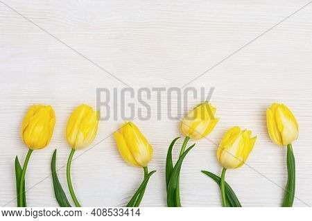 Blooming Yellow Flowers Tulip On White Wooden Table With Copy Space. Spring Flowers For Holiday, Wom