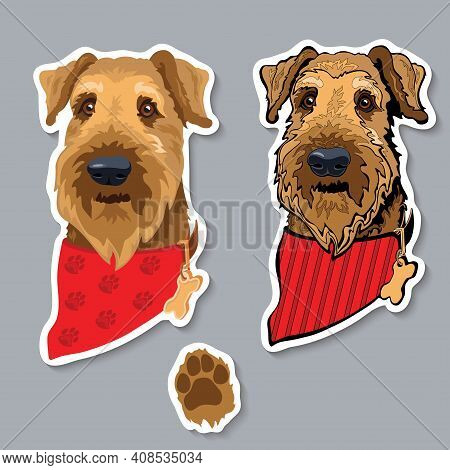 Dog Breed Airedale Terrier With Bandana. Colorful Sticker. Vector.