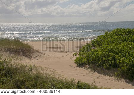 Dune Covered With Vegetation And Ship At Sea