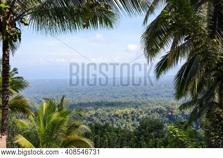 Coco Palm Tree Natural Frame On Tropical Island Landscape. Tropical Forest Palm Leaf View With Dista