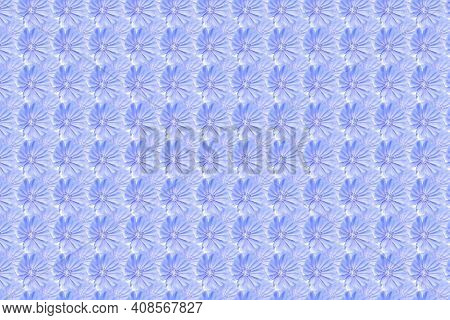 A Pattern Of Blue Flowers. Background Of Blue Chicory Flowers