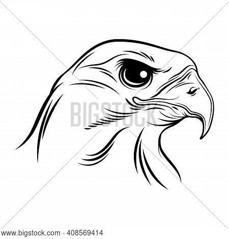 Eagle Icon, Eagle Design, Luxury Eagle, Eagle Icon Picture