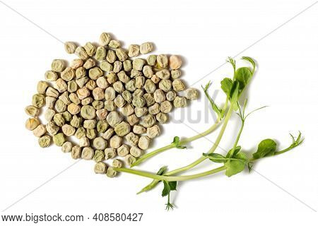 Close-up Of Peas Microgreens And Seeds Isolated On White Background. Vegan And Healthy Eating Concep