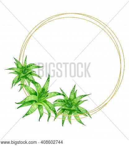 Watercolor Aloe Vera Round Frame With Golden Circles Isolated On White Background. Fresh Green Succu