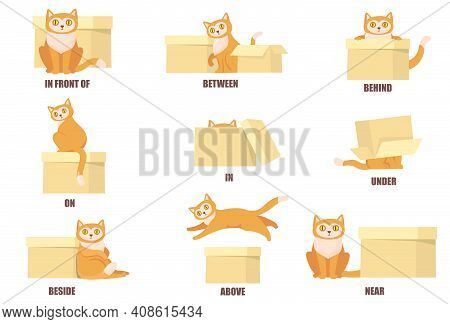 Learning Prepositions With Help Of Cat And Box Flat Set For Web Design. Cartoon Cat Above, Behind, B