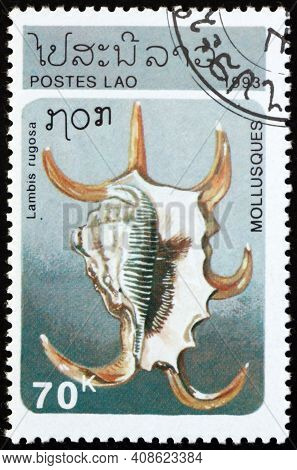 Laos - Circa 1993: A Stamp Printed In Laos Shows Chiragra Spider Conch, Lambis Rugosa, Is A Species