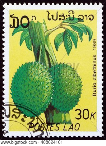 Laos - Circa 1989: A Stamp Printed In Laos Shows Durian (durio Zibethinus), Edible Fruit Produced By