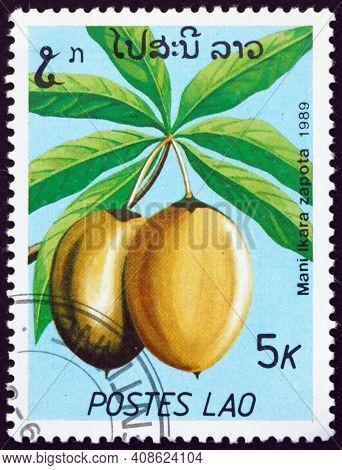 Laos - Circa 1989: A Stamp Printed In Laos Shows Sapodilla (manilkara Zapota), Edible Fruit Produced