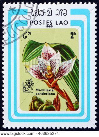 Laos - Circa 1985: A Stamp Printed In Laos Shows Sanders Maxillaria, Maxillaria Sanderiana, Is A Spe