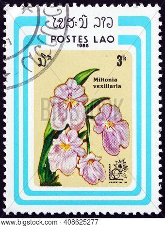 Laos - Circa 1985: A Stamp Printed In Laos Shows The Flag-like Miltoniopsis, Miltonia Vexillaria, Is