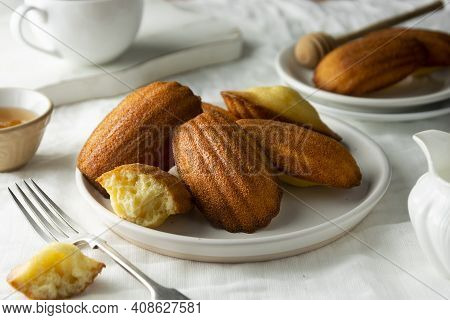 Madeleine Cakes, French Pastry. Served With Cup Of Tea And Honey. Breakfast On Table.