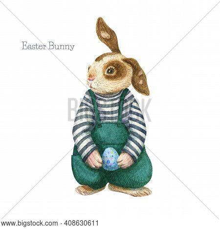 Bunny Illustration. Boy Rabbit In Clothes. Watercolor Cute Animal