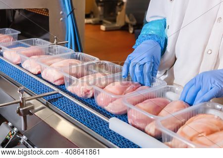 Factory For The Production Of Food From Meat.production Line With Packaging .conveyor Belt Food.food