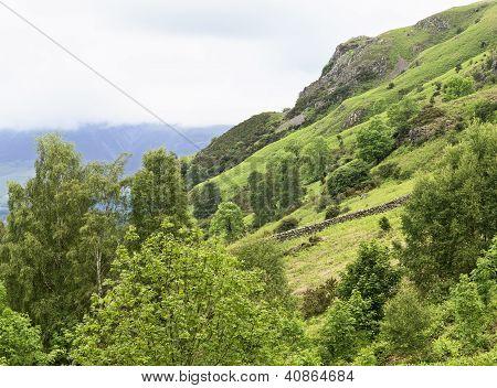 Lake District hillside
