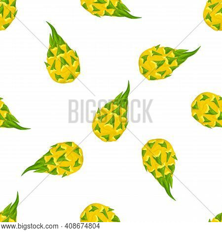 Seamless Pattern With Fresh Whole Yellow Pitaya Fruits Isolated On White Background. Summer Fruits F