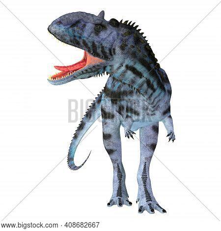 Majungasaurus Dinosaur On White 3d Illustration - Majungasaurus Was A Carnivorous Theropod Dinosaur