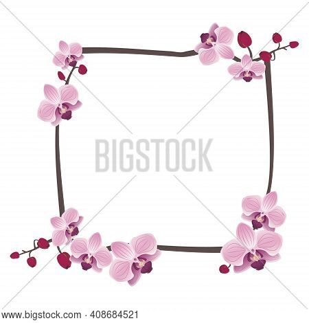 Cute Orchids Frame Or Flowers Postcard. Spring Pink Blooming Composition With Buds And Leaves. Festi