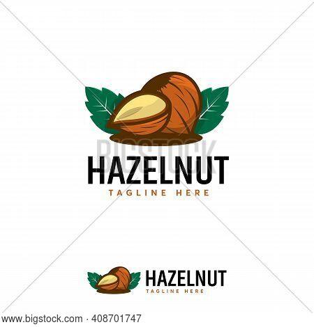 Detailed Hazelnut Logo Designs Vector, Illustration Of Hazelnut Fruit Template