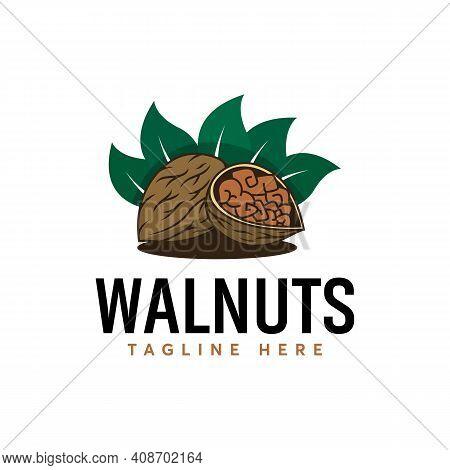 Detail Logo Of Walnuts Logo Designs Vector, Cartoon Walnuts Logo Template