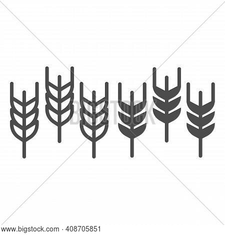 Spikelets Line And Solid Icon, Thanksgiving Day Concept, Wheat Ears Sign On White Background, Three