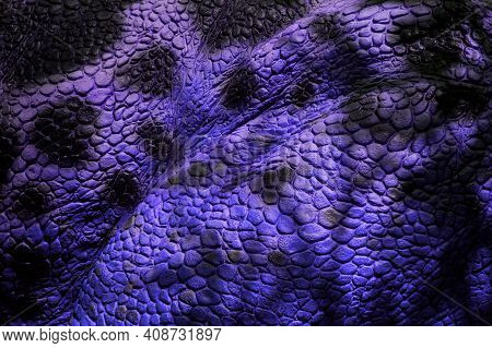 Detail Of Lilac Scaly Leather With Black Maps. Material For The Production Of Leather Goods - Belts,