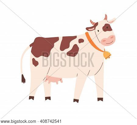Funny Spotty Cow With Bell On Neck. Farm Milk Animal With Udder. Childish Flat Vector Illustration I