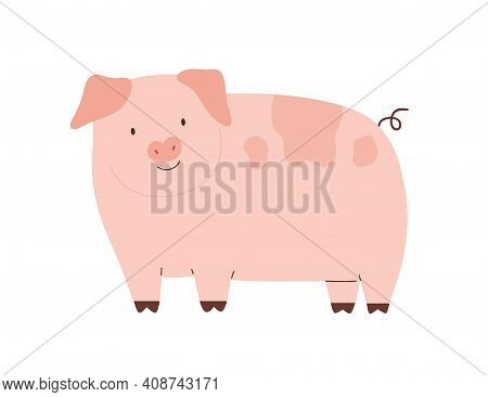 Happy Funny Pig Isolated On White Background. Cute Pink Piglet With Hooked Tail. Childish Colored Fl