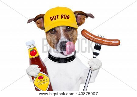 fast food dog with hot dog and ketchup licking with tongue poster
