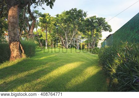 Garden And Landscaping. Consist Of Green Field, Empty Space And Natural Environment. That Ornamental