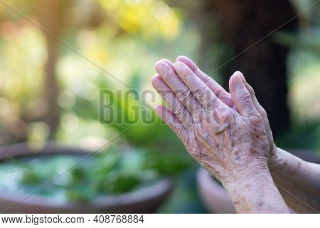 Close-up Of Hands Senior Woman Joined Together For Pray While Standing In A Garden. Focus On Hands W
