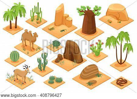 Desert Elements Isometric Set With Baobab Palms Cactuses Succulents Flora Snake Camel Sandstones San