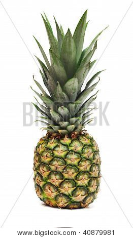Pineapple Isolated On White Background, Photographed Closeup