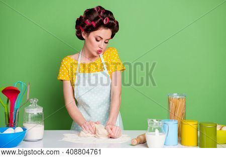Portrait Of Her She Nice Attractive Lovely Pretty Glamorous Housewife Cooking Domestic Dish Tasty Yu