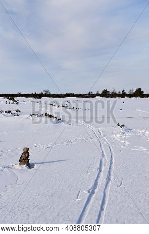 Ski Tracks By A Marked Path In The World Heritage On The Island Oland In Sweden