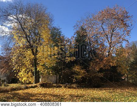 Beautiful Colorful Fall Colors In Connecticut Usa