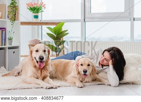 Golden retriever dogs lying on floor next to girl in light room