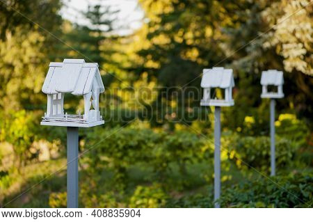Wooden Bird Feeder With Berries And Wheat Inside, Birdhouse On A Beautiful Blurred Background Of Yel