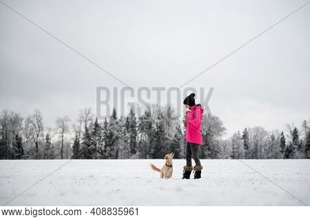 Small Cute Dog Attentively Looking At Her Female Owner During An Obedience Training Outside In A Sno