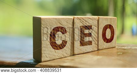 Ceo Letters On Wooden Blocks. Chief Executive Officer. Business Boss Concept. Nature Background. Eco