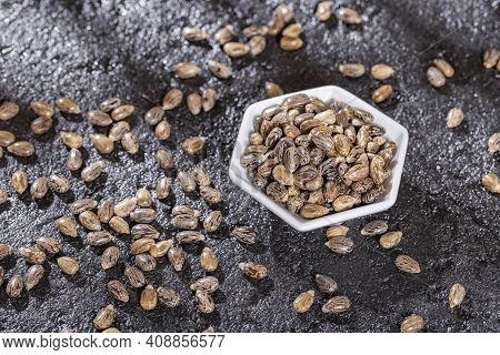 Castor Oil Seed On Black Background, Close-up