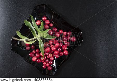 Cranberries On Plate And Green Leave On Dark Background.