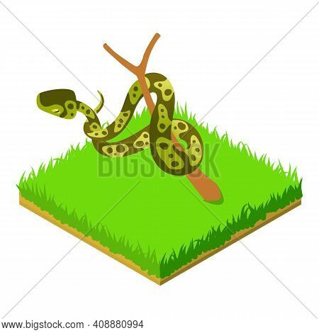Green Python Icon. Isometric Illustration Of Green Python Vector Icon For Web