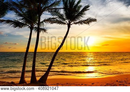 Three Palm Trees Silhouette On Sunset Tropical Beach. Coconut Palm Trees Against Colorful Sunset On