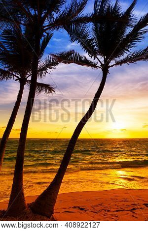 Palm Trees Silhouette On Sunset Tropical Beach. Coconut Palm Trees Against Colorful Sunset On The Be