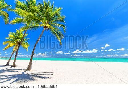 Coconut Palm Trees On White Sandy Beach In Caribbean Sea, Saona Island. Dominican Republic. Beach Su