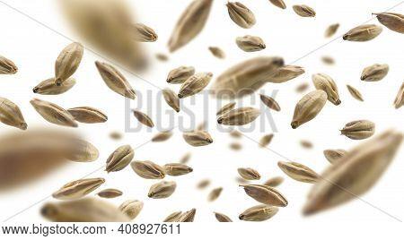 Barley Malt Grains Levitate On A White Background