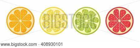 Lemon, Orange, Grapefruit, Lime.set Hand Drawn Doodle Citrus Vector Illustration