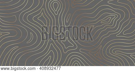 Luxury Gold Abstract Topographic Map Texture On Gray Background. Golden Lines Waves Topographical De