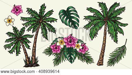 Tropical Plants Colorful Vintage Concept With Floral Bouquet Hibiscus Plumeria Flowers Monstera Leav